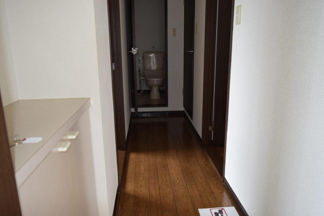 フラワービレッジ1 203号室写真